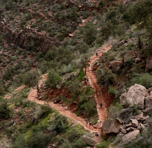 Bright Angel Trail, by Gary Coby, Jr.