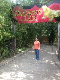 Entering the Dragon's Lair